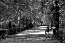 Free Parque Del Buen Retiro - Madrid Royalty Free Stock Photos - 93552588