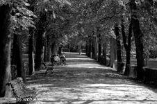 Free Parque Del Buen Retiro - Madrid Royalty Free Stock Photos - 93552968