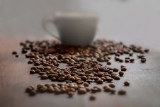 Free Coffee Beans And Coffee Cup Stock Images - 93557334