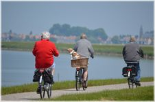 Free People Cycling By Lake Royalty Free Stock Images - 93557639