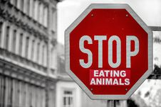 Free Stop Eating Animals Royalty Free Stock Photography - 93560297