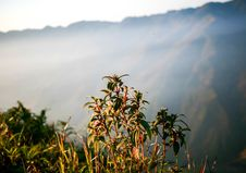 Free Light On Mountain Side Stock Image - 93560981