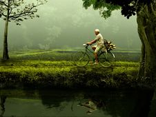Free Person Riding On Bicycle On Green Grassfield During Daytime Royalty Free Stock Image - 93562326