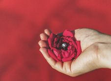 Free Hand Holding Red Rose With Diamond Ring Stock Photos - 93562523