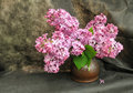 Free Still-life With A Lilac Royalty Free Stock Photography - 9360577
