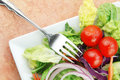 Free Salad With Lettuce Onion Cucumbers And Tomato Royalty Free Stock Image - 9364726