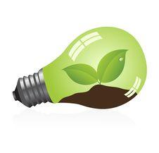 Free Light Bulb Stock Photography - 9361132