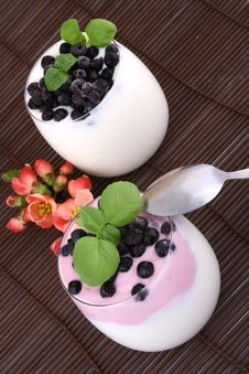Blueberries In Yogurt Royalty Free Stock Photography