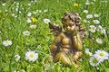 Free Angel In Grass Royalty Free Stock Photography - 9373517