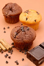 Free Chocolate Muffin Royalty Free Stock Photography - 9373907
