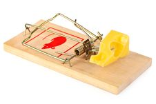 Free Mousetrap And Cheese Stock Images - 9370654