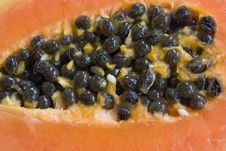 Free Papaya Seeds Royalty Free Stock Photo - 9374375