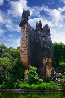 Free Stone Forest-A-shi-ma Royalty Free Stock Image - 9375486