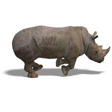 Free Rhinoceros Rendering Stock Photos - 9376843