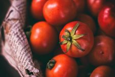 Free Bowl Of Fresh Tomatoes Stock Photos - 93732153