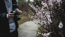 Free Man Photographing Spring Flowers Royalty Free Stock Photos - 93798108