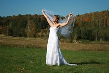 Bride With Bridal Veil Flying Walking In Grass Stock Photography