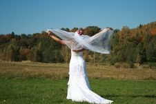 Bride With Bridal Veil Flying Royalty Free Stock Image