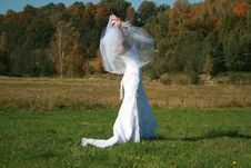 Bride With Bridal Veil Flying On A Meadow Stock Photography