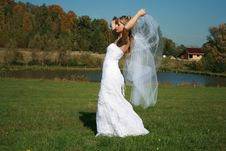 Bride With Bridal Veil Flying Walking On A Meadow Stock Photography