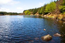 Free Fishing Lake Stock Photos - 9384683