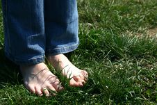 Feets On The Grass Stock Images