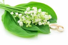 Lily Of The Valley And Golden Rings Isolated Stock Images