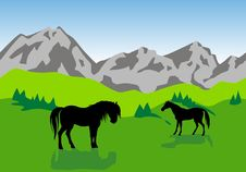 Free Landscape With Green Fields And Horses Royalty Free Stock Images - 9387339