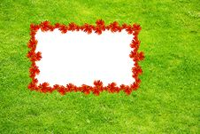 Free Green Background Royalty Free Stock Photo - 9388495