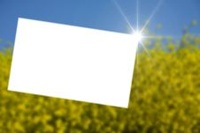 Free Green Field Stock Photography - 9388522