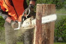 Free Man Cutting Tress Using Chainsaw Stock Photo - 93866700