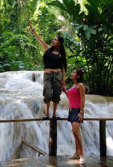 Free Exploring Tropical Nature Royalty Free Stock Photo - 9391715