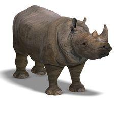 Free Rhinoceros Rendering Stock Photo - 9391760