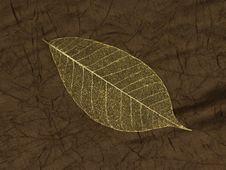 Free Decorative Skeleton Leaf Royalty Free Stock Image - 9395186
