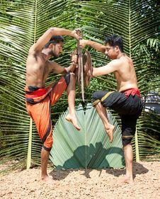 Free Kalarippayat, Indian Ancient Martial Art Of Kerala Royalty Free Stock Photos - 9397028