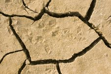 Free Cracks In Dry Earth Stock Images - 9397734