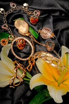 Free Jewelry Stock Photo - 9398240