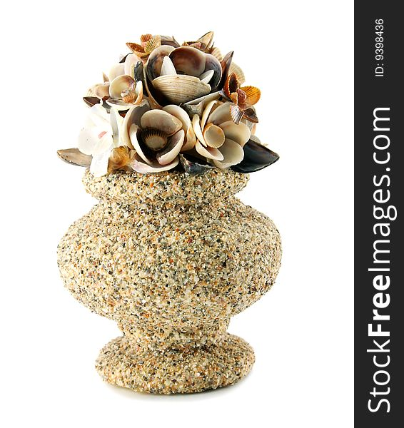 A Sea Shell Vase Isolated Free Stock Images Photos 9398436