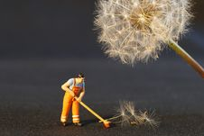 Free Sweeping Up Dandelion Seeds Stock Image - 93948931