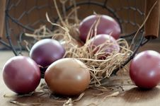 Free Egg, Easter Egg, Still Life Photography Royalty Free Stock Photo - 93949015