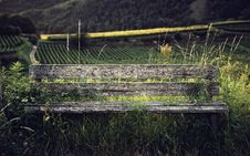 Free Rustic Wooden Bench In Grasses Royalty Free Stock Images - 93999579