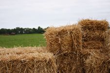 Free Farmer Plowing In Background Royalty Free Stock Photo - 940955
