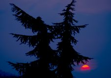 Free Red Sunset Stock Photos - 941513