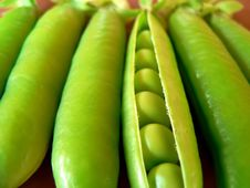 Free Green Peas Stock Photos - 943263
