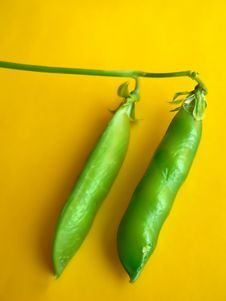 Free Green Peas Royalty Free Stock Images - 943359