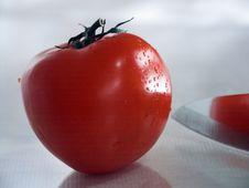 Free Tomato Stock Images - 944434