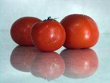 Free Three Tomatoes Royalty Free Stock Image - 944456