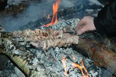 Free Grilled Pork On Bonfire Royalty Free Stock Photo - 944535
