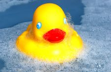 Free Rubber Ducky Stock Images - 946574