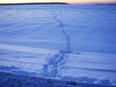 Free Walk On Ice Royalty Free Stock Image - 948226